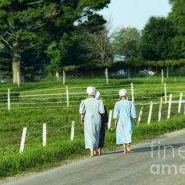 David Arment - Barefoot Amish Girls