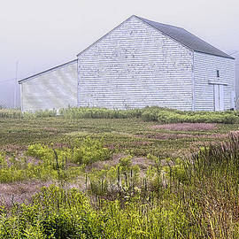 Marty Saccone - Barn and Shed on Boot Cove Road