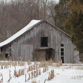 Dwight Cook - Barn in Kentucky no 20
