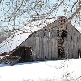 Dwight Cook - Barn in Kentucky no 23