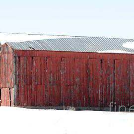 Dwight Cook - barn in Kentucky no 29