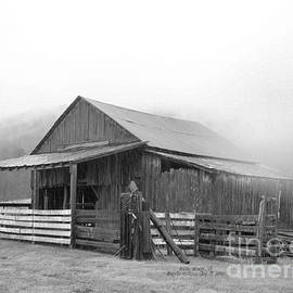 Angelia Hodges Clay - Barn in Rocky Mount