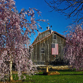 Sally Weigand - Barn in Spring