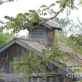 Dwight Cook - Barn in VA no 3