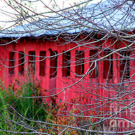 Diana Sainz - Barn of Red by Diana Sainz