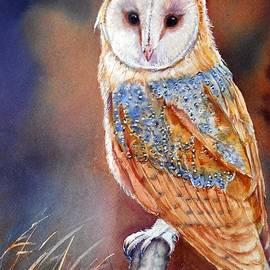 Patricia Pushaw - Barn owl