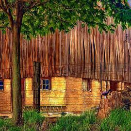 Steve Harrington - Barnyard - Paint