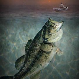 Randall Nyhof - Bass Revenge