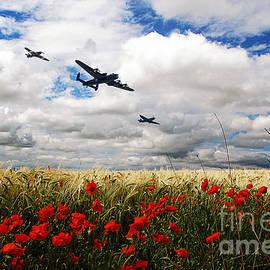 J Biggadike - Battle Of Britain Memorial Tribute
