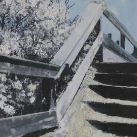 Heather Douglas - Bay Head Steps
