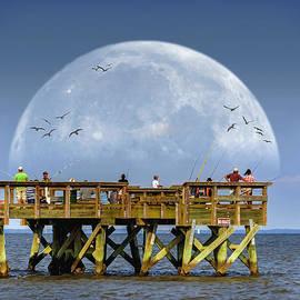 Brian Wallace - Bay Moon
