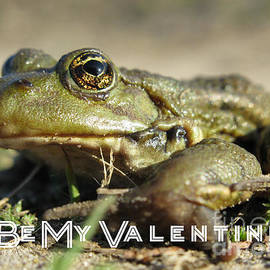 Ausra Paulauskaite - Be My Valentine