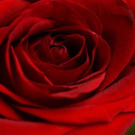 Wanda Brandon - Be My Valentine