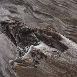 Morgan Wright - Beach Abstract 04
