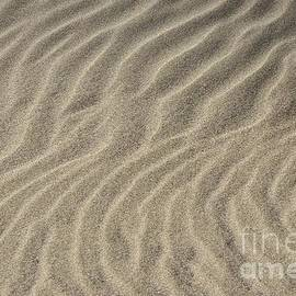 Morgan Wright - Beach Abstract 13