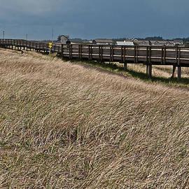 Valerie Garner - Beach Boardwalk along Dune Grass