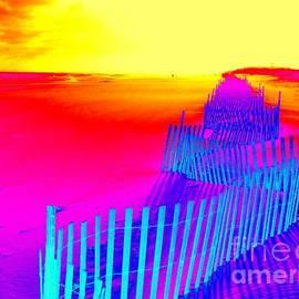 Ed Weidman - Beach Dream
