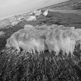 Allan Morrison - Beach Ice