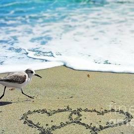 Karen Anderson - Beach Love