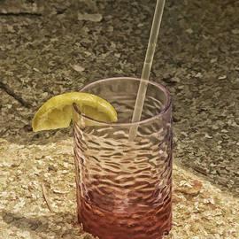 Arnie Goldstein - Beach Refreshment