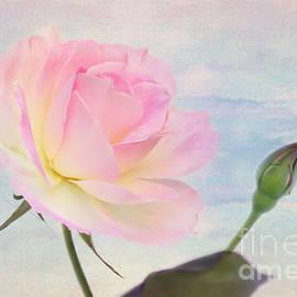 Kaye Menner - Beach Rose