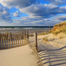 Dianne Cowen - Beach Shadows