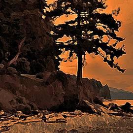 Stanley  Funk  - Beach Silhouette