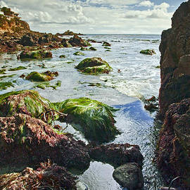 Jerry Cowart - Beach Tide Pool And Blue Sky
