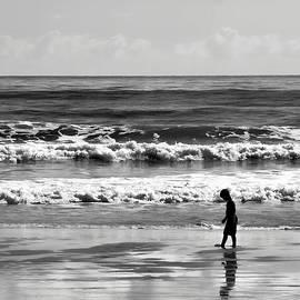 Michael Schwartzberg - Beach Walker 30