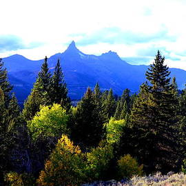 Jaunine Ammerman - Beartooth Mountains