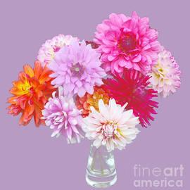 Rosemary Calvert - Beautiful dahlias