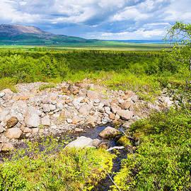 Matthias Hauser - Beautiful green landscape in South Iceland
