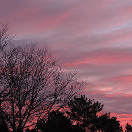 Teresa Schomig - Beautiful Sky