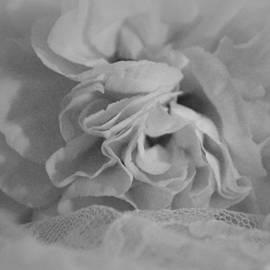 The Art Of Marilyn Ridoutt-Greene - Beautiful Solitude