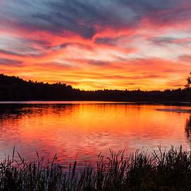 Laura Duhaime - Beautiful Vibrant Sunset