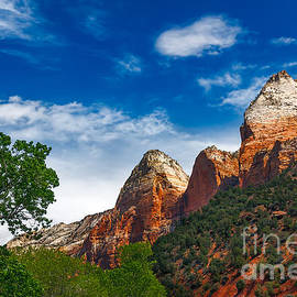 Robert Bales - Beautiful Zion