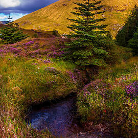 Jenny Rainbow - Beauty all Around. Rest and Be Thankful. Scotland