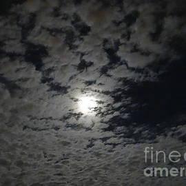 Joseph Baril - Beaver Moon