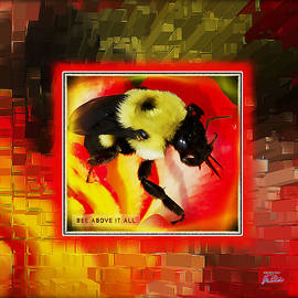 Joe Paradis - Bee Above It All