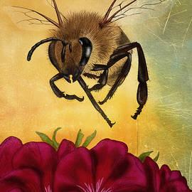 April Moen - Bee I