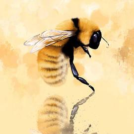 Veronica Minozzi - Bee
