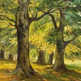 Sorin Apostolescu - Beeches in the park