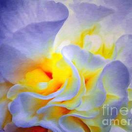 Lianne Schneider - Begonia Shadows II Painting