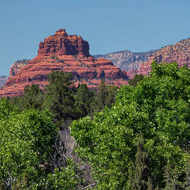 Marianne Campolongo - Bell Rock Sedona with trees