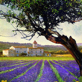 R christopher Vest - Bent Tree And Villa With Lavender