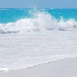 Marcus Dagan - Bermuda South Shore Wave