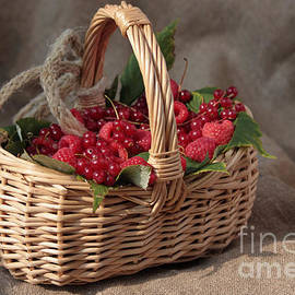 Luv Photography - Berries In A Basket