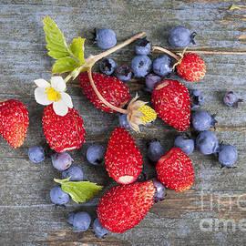 Elena Elisseeva - Berries on rustic wood