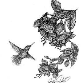 Jennifer Campbell Brewer - Berylline Hummingbird