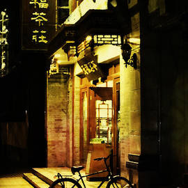 Jani Bryson - Bicycle on the Streets of Beijing at Night